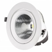 downlight 30w orientable